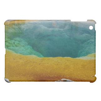 朝顔のプールのiPadの場合 iPad Miniケース