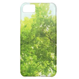 木および太陽のIphoneカバー iPhone5Cケース