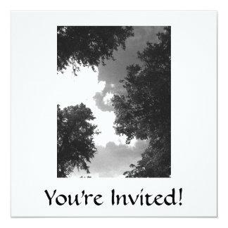 木および空の粒状の白黒イメージ 13.3 スクエアインビテーションカード