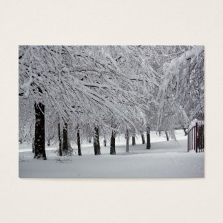 木および雪 名刺