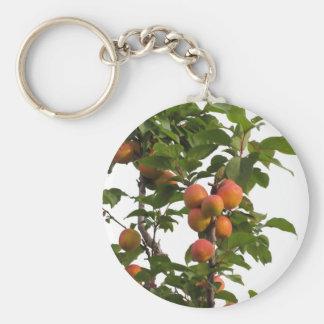 木でつるす熟した杏子 キーホルダー