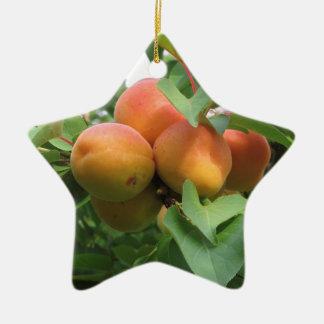 木でつるす熟した杏子。 タスカニー、イタリア セラミックオーナメント