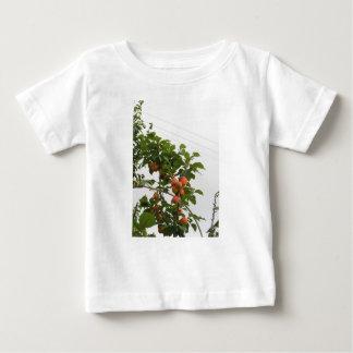木でつるす熟した杏子。 タスカニー、イタリア ベビーTシャツ