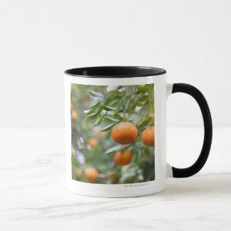 木でつるす蜜柑 マグカップ