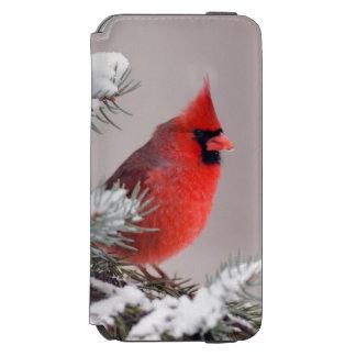 木でとまる北の(鳥)ショウジョウコウカンチョウ iPhone 6/6Sウォレットケース
