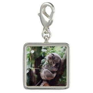 木でリラックスしているかわいいコアラ チャーム
