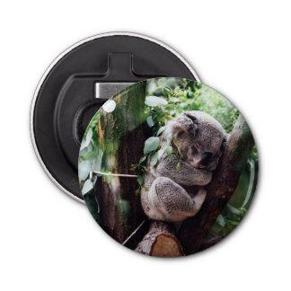 木でリラックスしているかわいいコアラ 栓抜き