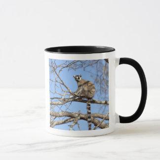 木で暖まっているリング後につかれたLemur (Lemurのcatta) マグカップ