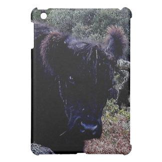 木に傷付いているDartmoor黒いギャロウェーの牛 iPad Miniケース