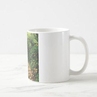 木のかえでによって並べられる銀製の入り江 コーヒーマグカップ