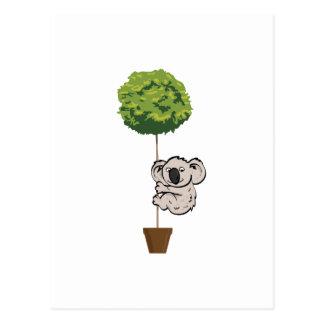 木のかわいいコアラ ポストカード