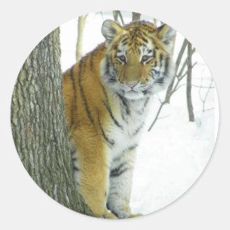 木のまわりでかいま見る雪の虎の子 ラウンドシール