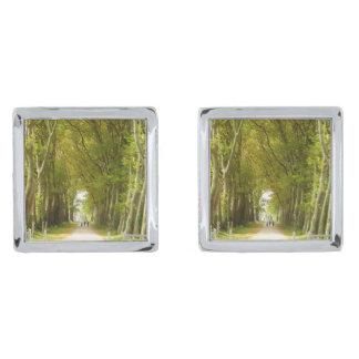 木のカフスボタンの道 シルバー カフスボタン