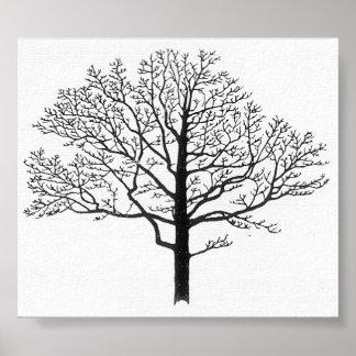 木のシルエット ポスター