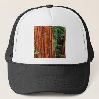木のセコイアオスギのMariposa果樹園ヨセミテ キャップ