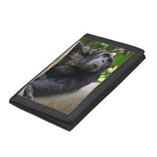 木のチンパンジー(鍋のTroglodytes)の眺め ナイロン三つ折りウォレット