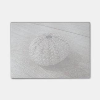 木のテーブルの上の貝 ポストイット