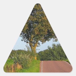 木のブナの道 三角形シール
