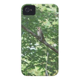 木の北の明滅 Case-Mate iPhone 4 ケース