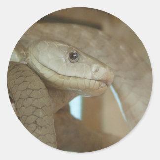 木の危ないヘビ ラウンドシール