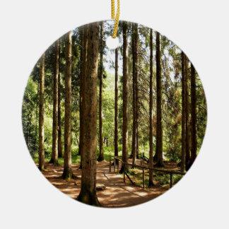 木の小ぎれいな錯覚 セラミックオーナメント