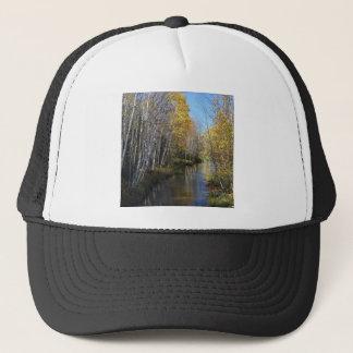 木の川の《植物》アスペン キャップ