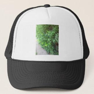 木の幹の野生の保存+木緑アメリカNVN682のおもしろい キャップ