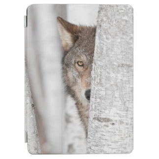 木の後ろのオオカミ(イヌ属ループス) iPad AIR カバー
