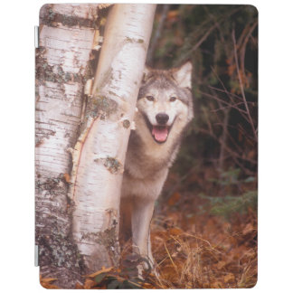 木の後ろのオオカミ iPadスマートカバー