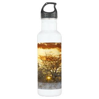 木の日没のヴァーモントの冬 ウォーターボトル