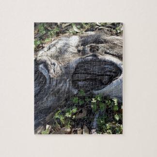 木の根 ジグソーパズル