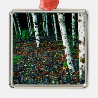 木の永続的な部屋の樺の木だけ シルバーカラー正方形オーナメント