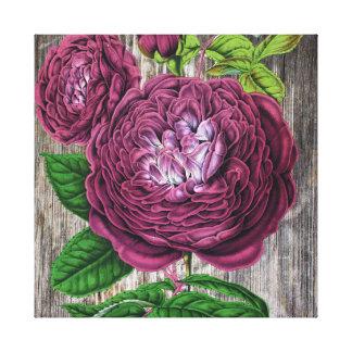 木の深紅のバラ キャンバスプリント