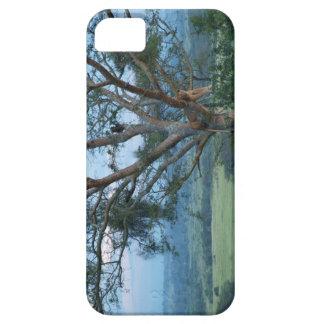 木の登山のライオン iPhone SE/5/5s ケース