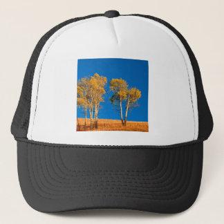 木の秋の《植物》アスペンイエローストーンワイオミング キャップ