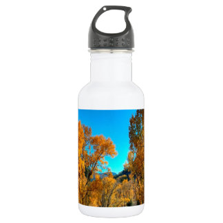 木の紅葉の川 ウォーターボトル