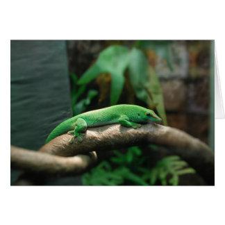 木の緑のヤモリ カード
