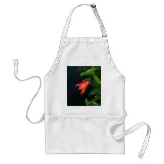 木の赤いザクロの花(ザクロ) スタンダードエプロン