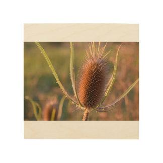 木の野生の花の写真のプリント ウッドウォールアート