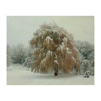 木の金ヤナギ ウッドウォールアート