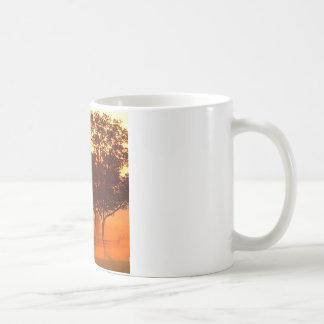 木の馬の農場の日の出ケンタッキー コーヒーマグカップ