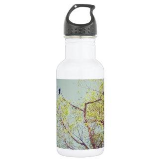 木の鳥 532ML ウォーターボトル