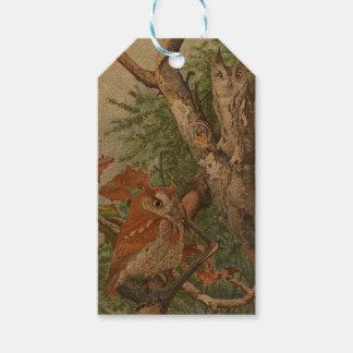 木の2羽の怒っているヴィンテージのフクロウ ギフトタグ