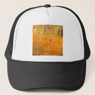 木の《植物》アスペンおよび風に吹かれた草アイダホ キャップ