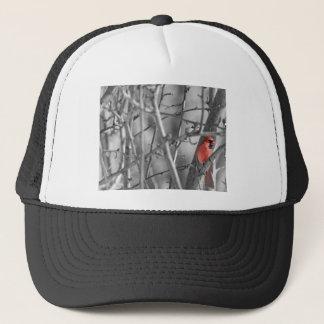 木の(鳥)ショウジョウコウカンチョウ キャップ