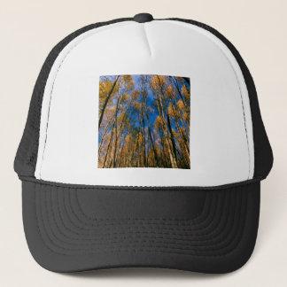 木のautumn 《植物》アスペンによって隠される湖アラスカ キャップ