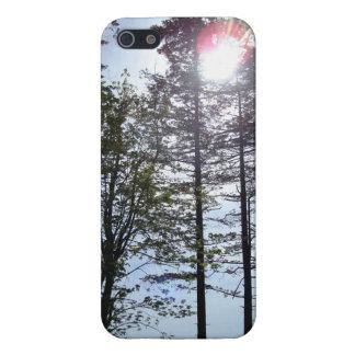 木のiPhoneの場合の日光 iPhone 5 Cover