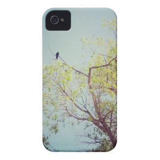 木のiPhoneの場合、穹窖の鳥 Case-Mate iPhone 4 ケース