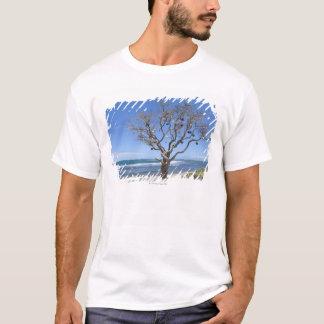 木はビーチの古いブイによって飾りました Tシャツ