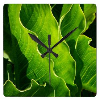 木は葉の自然の森の森林を去ります スクエア壁時計